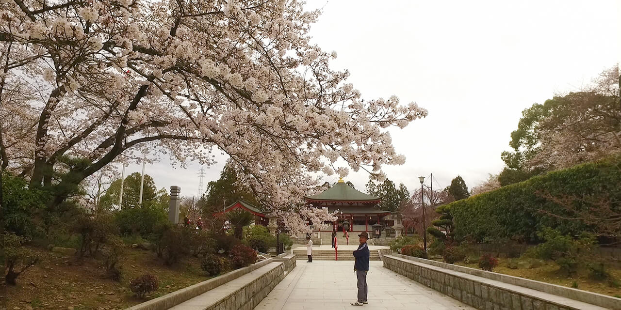 A journey to landscape in the original state of Nara